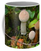 Rainforest 'shrooms Coffee Mug