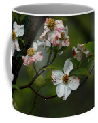 Rainy Day Dogwood Coffee Mug