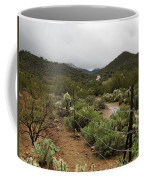 Rainy Desert Coffee Mug