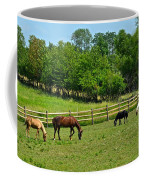 Ranch Daisies Coffee Mug