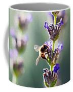 Random Lavender Sampling Coffee Mug