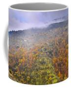 Raniy Days In Automn Coffee Mug