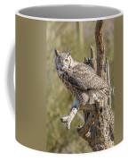 Raptor 14 Coffee Mug