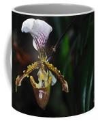 Rare Orchid - Paphiopedilum Gratrixianum Coffee Mug