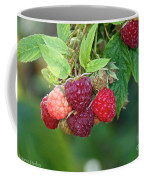 Rasberries Coffee Mug