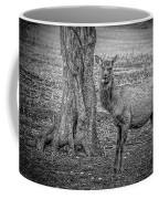 Raspberry Elk Black And White Coffee Mug