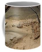 Rattlesnake Arizona Desert Coffee Mug