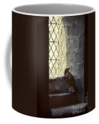 Raven By Window Coffee Mug
