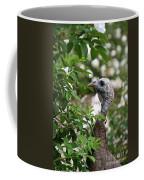 Ravishing Coffee Mug