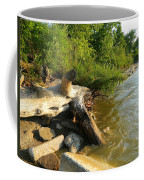 Raw Lake Erie Shore Coffee Mug