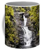 Raymondskill Falls In Milford Pa Coffee Mug