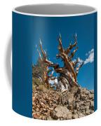 Reaching Upward Coffee Mug