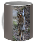 Ready To Howl Coffee Mug