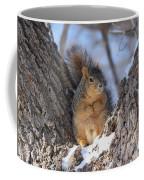 Ready To Rumble Coffee Mug