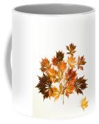 Reconstructed Full Moon Maple Coffee Mug