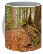 Recycling In The Cheakamus Rainforest Coffee Mug
