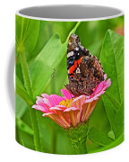 Red Admiral Butterfly And Zinnia Flower Coffee Mug