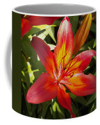 Red And Orange Lilly In The Garden Coffee Mug