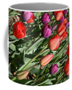 Red And Purple Tulips Coffee Mug