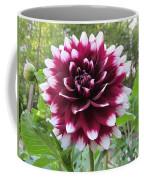 Red And White Dahlia Coffee Mug