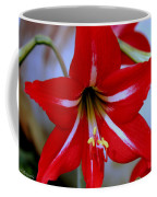 Red And White Lilly Coffee Mug by Debra Forand