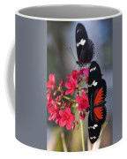 Red And White Longwing Butterflies  Coffee Mug