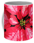 Red And White Poinsettia Coffee Mug