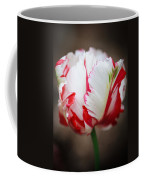 Red And White Tulip Coffee Mug