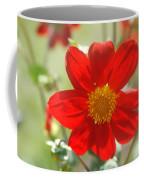 Red And Yellow Beauty Coffee Mug