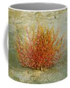 Red And Yellow Desert Color Coffee Mug