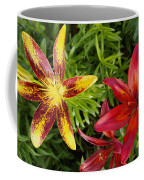 Red And Yellow Lilly Flowers In The Garden Coffee Mug