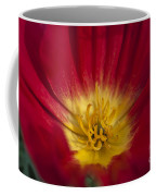 Red And Yellow Poppy 1 Coffee Mug