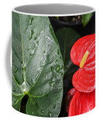 Red Anthurium Flower Coffee Mug by Denise Bird