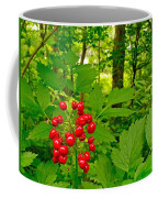 Red Baneberry Along Rivier Du Nord Trail In The Laurentians-qc Coffee Mug