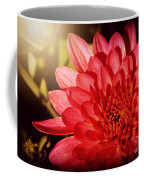 Red Beauty Welcomes The Sun - Flowers Of Summer Coffee Mug