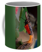 Red Beetle Rising Coffee Mug