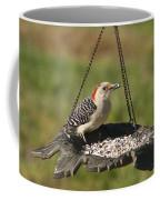 Red Bellied Woodpecker - Melanerpes Carolinus Coffee Mug