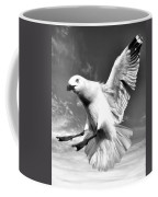 Red Billed Seagull In Black And White Coffee Mug