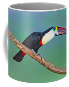 Red-billed Toucan Coffee Mug
