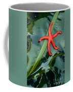 Red Bloodstar Coffee Mug