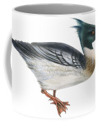 Red-breasted Merganser Coffee Mug by Anonymous