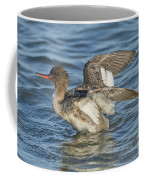 Red-breasted Merganser Coffee Mug