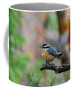 Red-breasted Nuthatch Coffee Mug