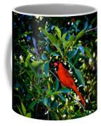 Red Cardinal 1 Coffee Mug