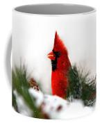 Red Cardinal Coffee Mug