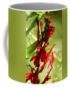 Red Cardinal Flower Coffee Mug