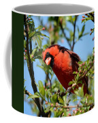 Red Cardinal In Springtime Coffee Mug