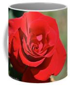 Red Carpet Rose Coffee Mug