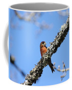 Red Crossbill Finch Coffee Mug