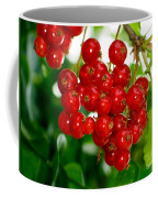 Red Currants Ribes Rubrum Coffee Mug